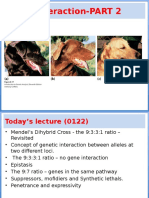 For Connect With Final Answers Gen. Int 2 in Class Lecture 6 Gene Interaction - PART 2