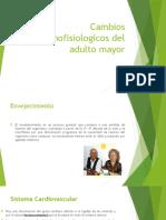 Cambios Anatomofisiologicos Del Adulto Mayor