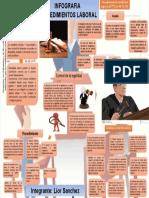 Infografia Laboral Lior