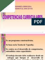 Competencias Curriculares