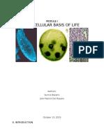 Cell Basario&Delrosario