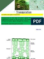 transpiration ppt