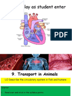 the circulatory system ppt