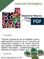 Fragmentación - Aleja y Dirley