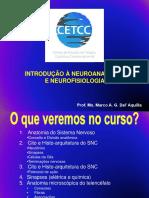 Introdução à Neuroanatomia e à Neurofisiologia