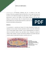 ARTERIOESCLEROSIS CORONARIA.pdf