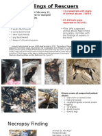 Dead Dogs - Findings of Rescuers & Suspected Animal Abuse