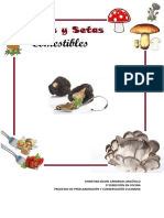 España, Hongos y Setas Comestibles - Christian David Cárdenas Argüello