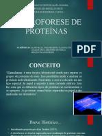 Eletroforese de Proteinas [Salvo Automaticamente]