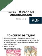 Nivel Tisular de Organizacion
