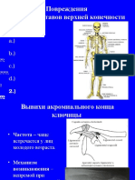 Traumatizmele Membrului Toracic RUS GorneaAlbastru