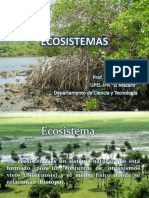 Clase 3 de Ecosistemas UCV (Clase 3)
