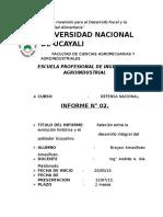 INFORME 02 Defensa Nacional Colegios