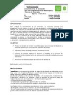 Informe 4to Lab. Beneficio. (Trituracion)