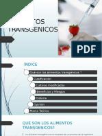 alimentos-transgenicos.pptx