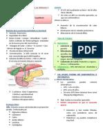 Dr. Ruiz - Enfermedades de vesícula y vía biliar
