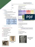 Dr. Kruger - Tumores Retroperitoneales