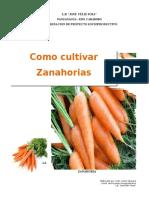 Guia Del Cultivo de La Zanahoria