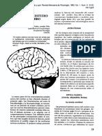 Historia Cerebro