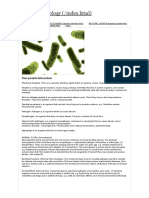 Host-parasite Interactions - General Bacteriology
