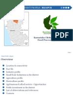 Bijapur District Profile