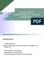 Utilizacion de Crbohidratos y Acidos Organicos 2