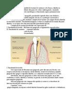 Parodontiul referat
