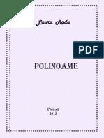 PolinoameMatematicaTeorie