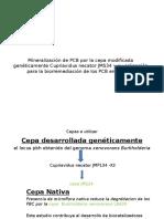 Suelos PCB