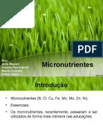 Micronutrientes 2014.1