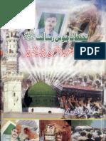 Tahaffuz Namoo e Risalat Aur Amir Abdul Rehman Cheema Shaheed by Ameer Ul Qadri