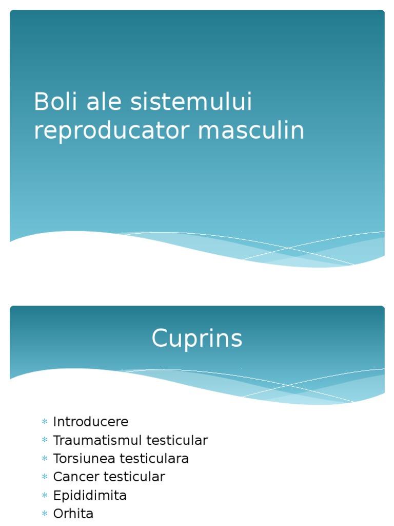 Boli ale sistemului reproducator prostatita