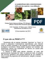 Pancs_Mini Curso Sepex 22 Nov 2012