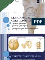 Lesiones Cartílago Articular