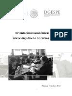 Orientaciones Academicas Seleccion y Diseno Cursos Optativos