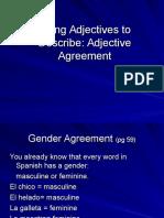 av adjective agreement