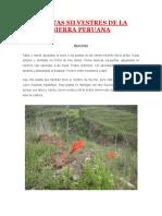 Plantas Silvestres de La Sierra Peruana