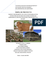 Perfil de Proyecto de Cuyes