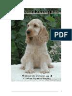 manualcolores.pdf