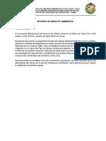 ESTUDIO DE IMPACTO AMBIENTAL Ocopa.pdf