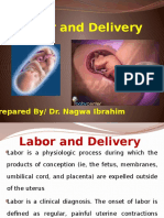 labor and delivery.pptx