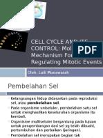 PPT Siklus Sel