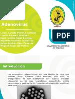 Adenovirus Microbiología