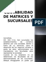 Contabilidad de Matrices y Sucursalesbv
