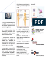 Folder-Eco Som - Cura Pranica.pdf