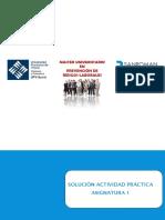 Solución Actividad práctica asignatura 1.pdf