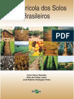 Uso Agricola Solos Brasileiro s