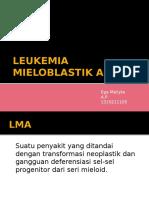Leukemia Mieloblastik Akut