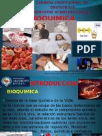 2 Clase Bioquimica