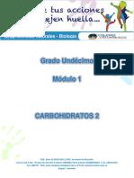 1.2 Carbohidratos 2.pdf